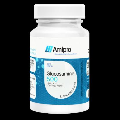 Amipro Glucosamine 500