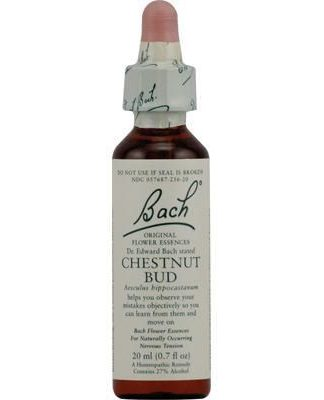 Bach Chestnut bud Feel healthy