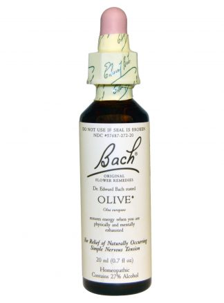 Bach Olive