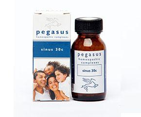 Pegasus Sinus