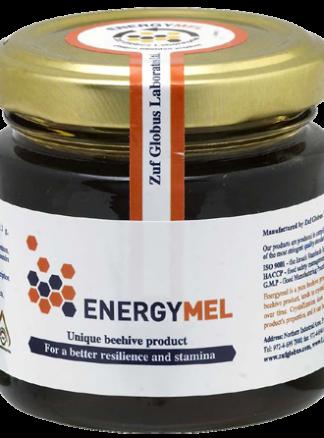 Energymel-2